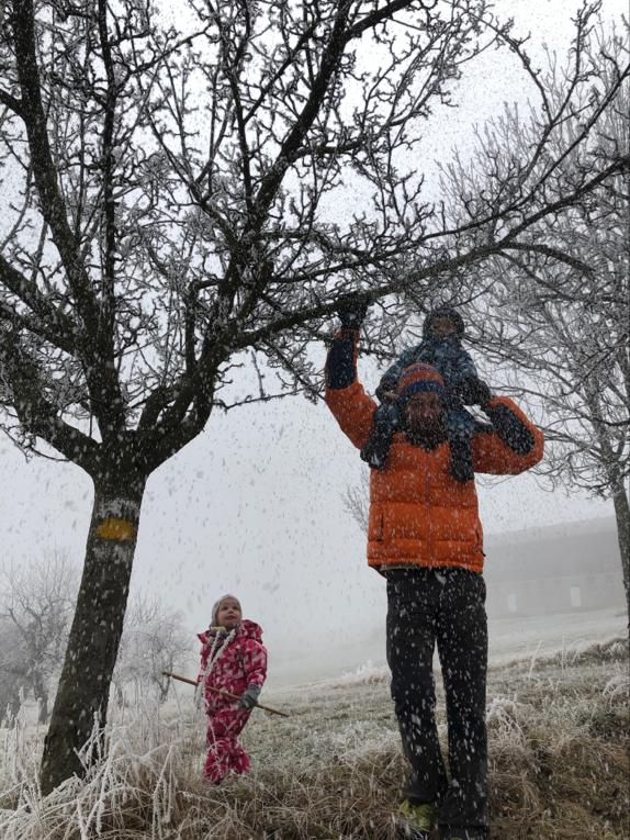 microadventureforkids - wir befreien die Bäume vom Schnee