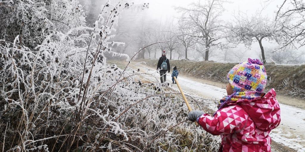 microadventureforkids die bäume vom schnee befreien